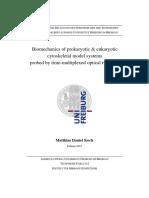 PhD Matthias Koch Spiroplasma.pdf