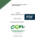 analisis bornacelli camilo.docx