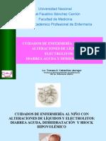 CUIDADOS DE ENF.- DIARREA y  DESH  2009-II.ppt
