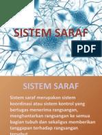 Sistem Saraf Indera Hormon