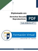 Guia Didactica 3-DSR