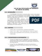 MULTIPLICAÇÃO DE FERMENTO.RAJQUIM.pdf