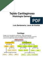 cartilago_NV.pdf