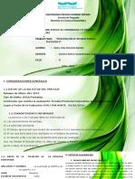 Presentación Informe Psicologico oficial
