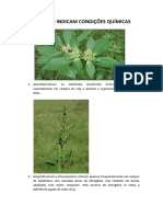 Plantas indicadoras.docx