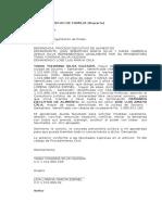DEMANADA EJECUTIVA DE ALIMENTOS.doc