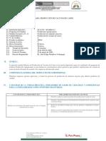 PRODUCCION DE VACUNOS DE CARNE