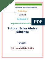 GUIA_DE_ENTREVISTA (1)
