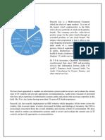 AUDIT OF ERP SOFTWARE upload.pdf