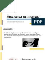 Violencia d e Generopdf