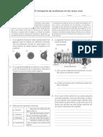 Taller-Transporte-Celular.pdf