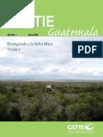 CATIE_InfoCATIE_Guatemala 8