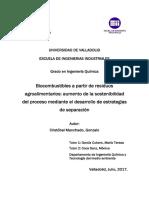 Biocombustibles a partir de residuos agroalimentarios.pdf