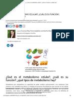 ? Metabolismo celular