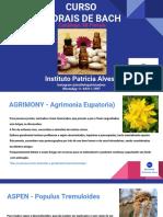 Catálogo 38 Florais.pdf