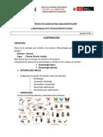 separataentomologia 01