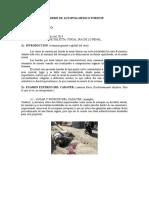 medicina legal y forence informe ejemplo