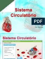 sistemacirculatrio-110201115123-phpapp02