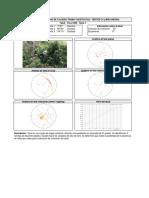 TCLL128N.pdf