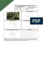 TCLL129N.pdf