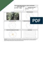 TCLL156N.pdf