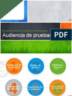 AUDIENCIA DE PRUEBAS.pptx