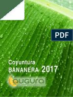 COYUNTURA-BANANERA-2017