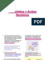 5. Nucleótidos y ácidos nucleicos