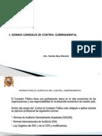 5.-NORMAS-GENERALES-DE-CONTROL-GUBERNAMENTAL