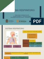 Respiratorio - Completo.pdf