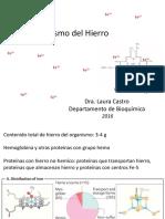 Metabolismo del hierroLC2016clase