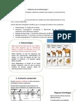 Guia n°5 Primero medio Biología