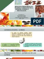 Metabolitos primarios en la industria farmacéutica