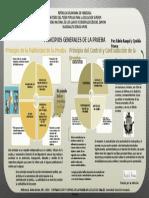 Infografía  de principios de la prueba Edwin y Cynthia.pptx
