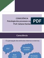 Aula_Consc_Sono_Proc_Cog.pdf