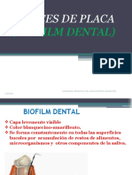 CLASE PRACTICA BIOFILM- INDICES