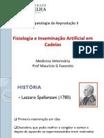 aula 3 - IA cadelas_20200407-1155.pdf