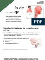 Fisiología de Laringe.pptx