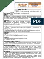 ACA0152019 - PLANO DE ENSINO (1) (1)