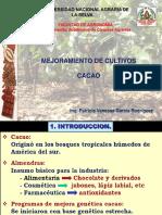 1 INTRODUCCION_RRGG CACAO