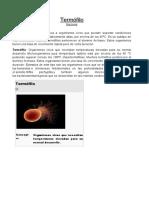 1TERMINOS MICROORGANISMOS