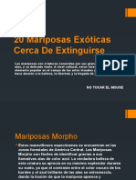 20 Mariposas Exóticas Cerca De Extinguirse.pptx