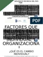 4.2 cambio organizacional e individual