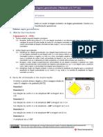 angulo_generalizado_professor.pdf