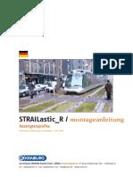 reg5_STRAILastic_R_montage_2005_dt[1]