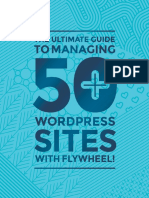 how-to-manage-50-wordpress-sites-with-Flywheel