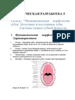 Методическая разработка 5