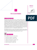 NUCLEOTIDES.pdf