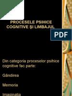 procesele_psihice_cognitive_si_limbajul