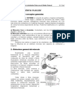 Tema 2013 El Sistema Muscular